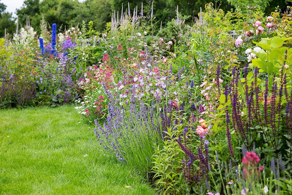 hampshire country garden o