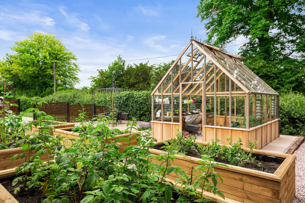 Growing your own raised beds Hampshire