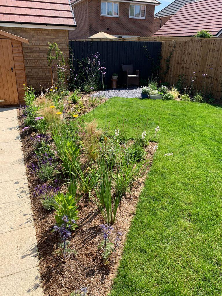 Arborfield Berkshire Modern Garden Flower Border June 2020