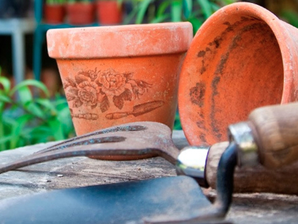 Gardening Workshops | Berkshire | Hampshire | Surrey